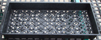 perforated-trays
